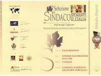 2013 Selezione Sindaco Argento Valdobbiadene Docg Dry Supreme