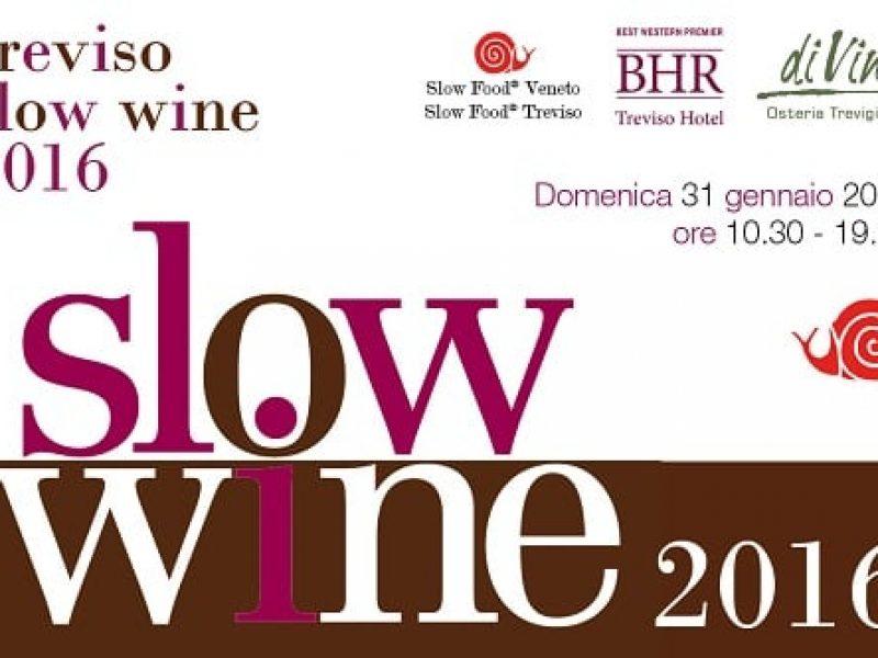 Slow Wine 2016 | Treviso